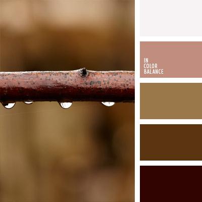 paleta-de-colores-741