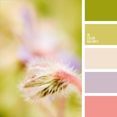 paleta-de-colores-748