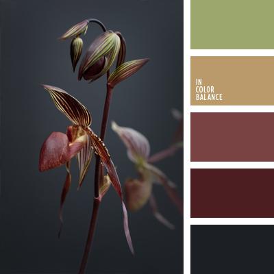 paleta-de-colores-752
