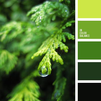 paleta-de-colores-764