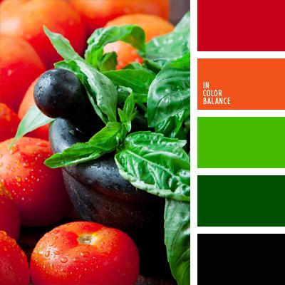 paleta-de-colores-766