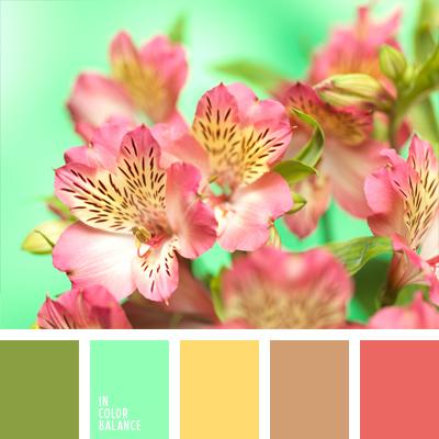 paleta-de-colores-767