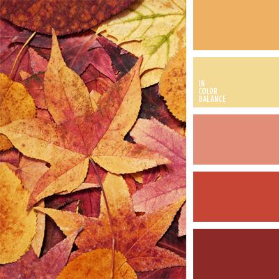 paleta-de-colores-770
