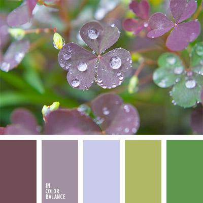 paleta-de-colores-772