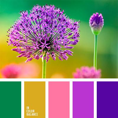 paleta-de-colores-777