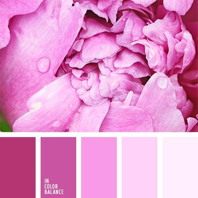 paleta-de-colores-779