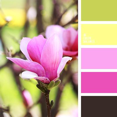 paleta-de-colores-781