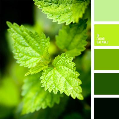 paleta-de-colores-782