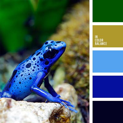 paleta-de-colores-787