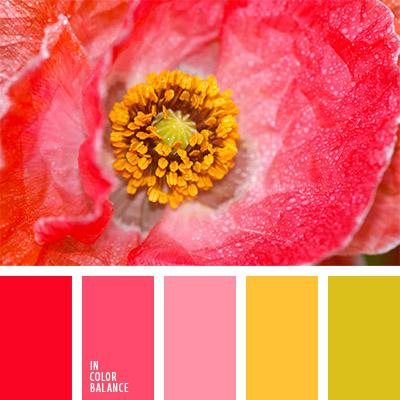 paleta-de-colores-794