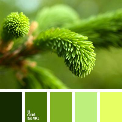 paleta-de-colores-795