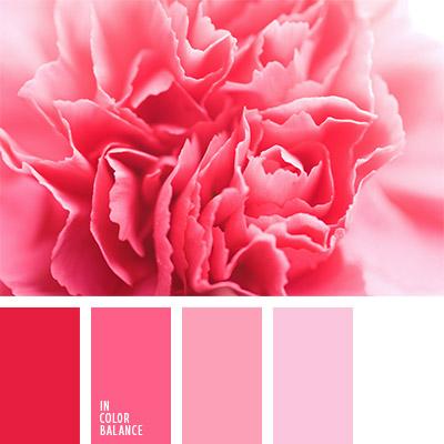 paleta-de-colores-804