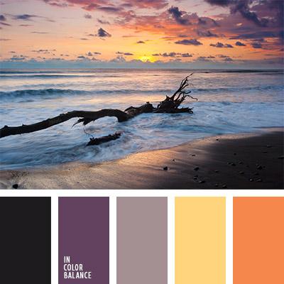 paleta-de-colores-805