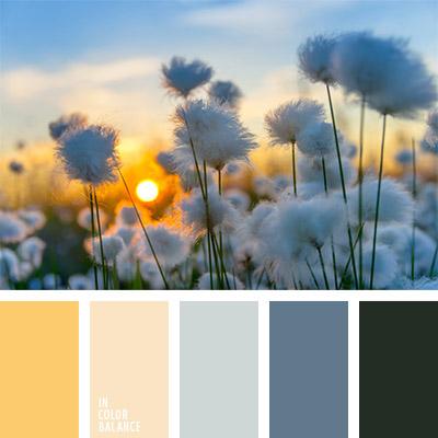 paleta-de-colores-814