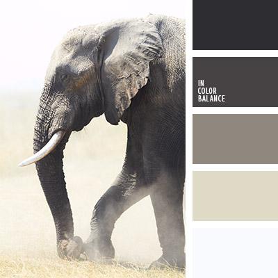 paleta-de-colores-815