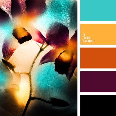 paleta-de-colores-825