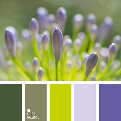 paleta-de-colores-840