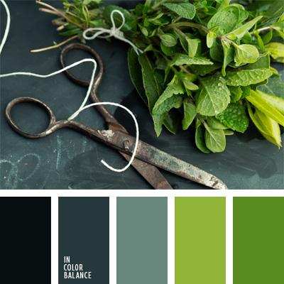 paleta-de-colores-849