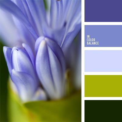paleta-de-colores-852
