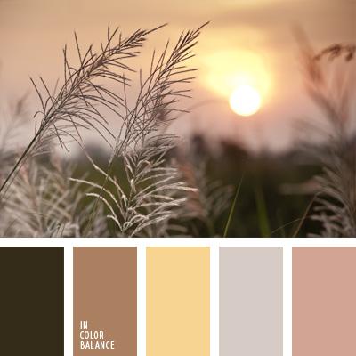 paleta-de-colores-860