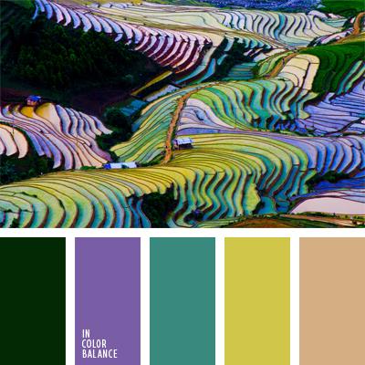 paleta-de-colores-879
