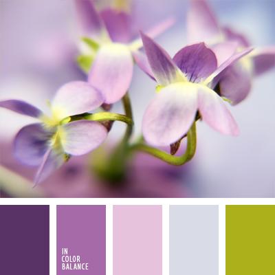 paleta-de-colores-885