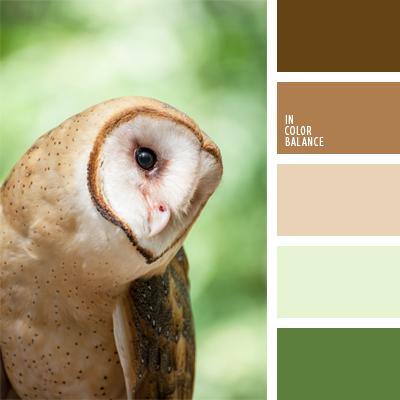 paleta-de-colores-891