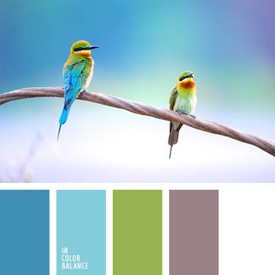 paleta-de-colores-893