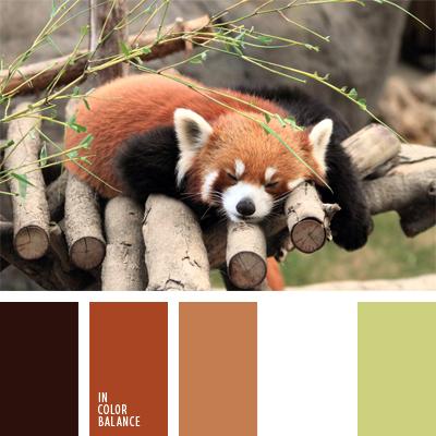 paleta-de-colores-898