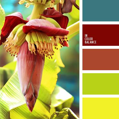 paleta-de-colores-899