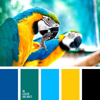 paleta-de-colores-901