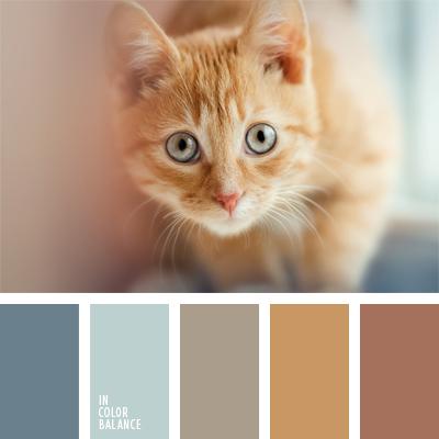paleta-de-colores-903