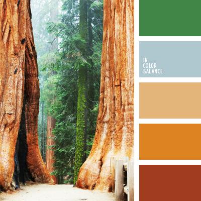 paleta-de-colores-904