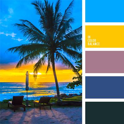 paleta-de-colores-907