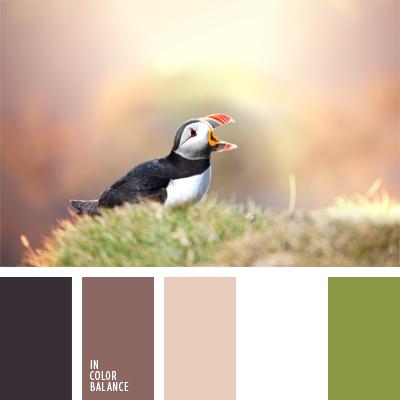 paleta-de-colores-908