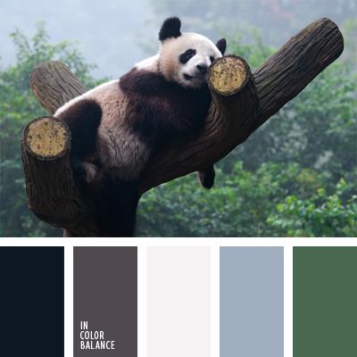 paleta-de-colores-910