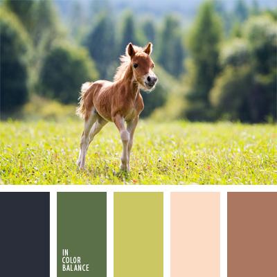 paleta-de-colores-914