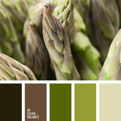 paleta-de-colores-918