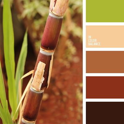 paleta-de-colores-921