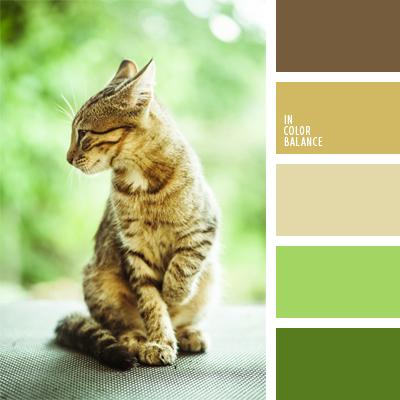 paleta-de-colores-924