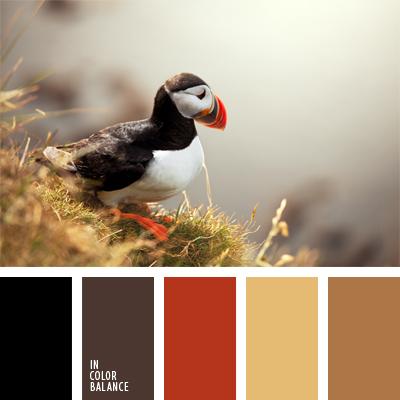 paleta-de-colores-925