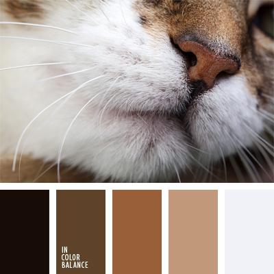 paleta-de-colores-930