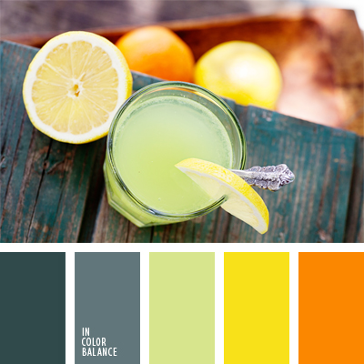 paleta-de-colores-932