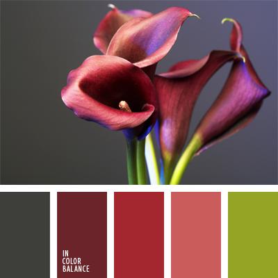paleta-de-colores-933