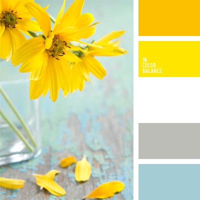 paleta-de-colores-935