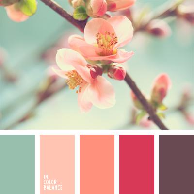 paleta-de-colores-939