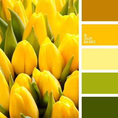 paleta-de-colores-941