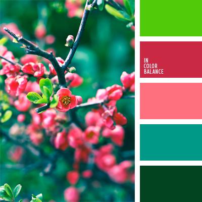 paleta-de-colores-942