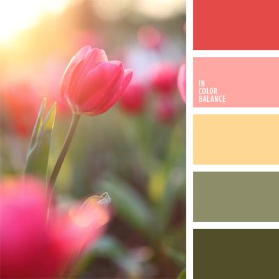 paleta-de-colores-943