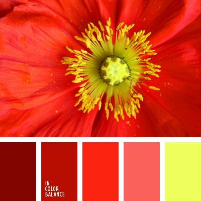 paleta-de-colores-945